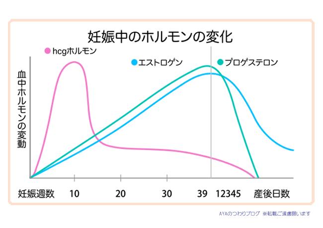 妊娠中の女性ホルモンの変化の表 hcg